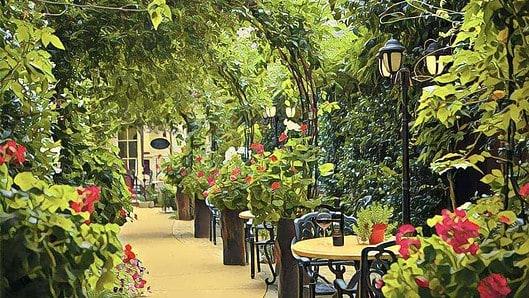 Romeo Winery garden